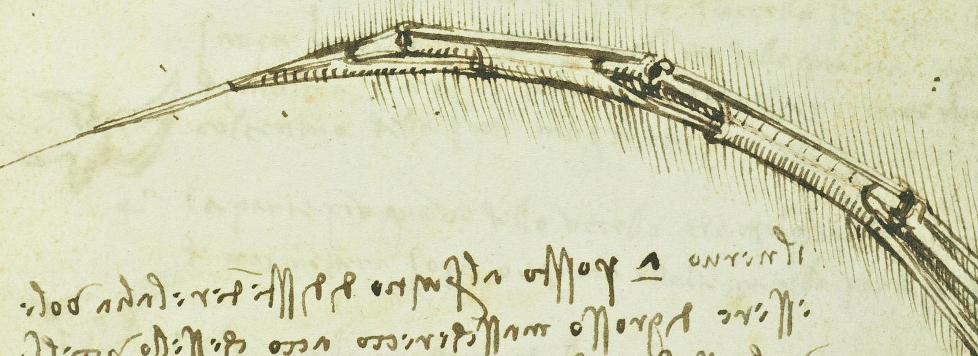 LEONARDO DA VINCI'S CODEX ON THE FLIGHT OF BIRDS