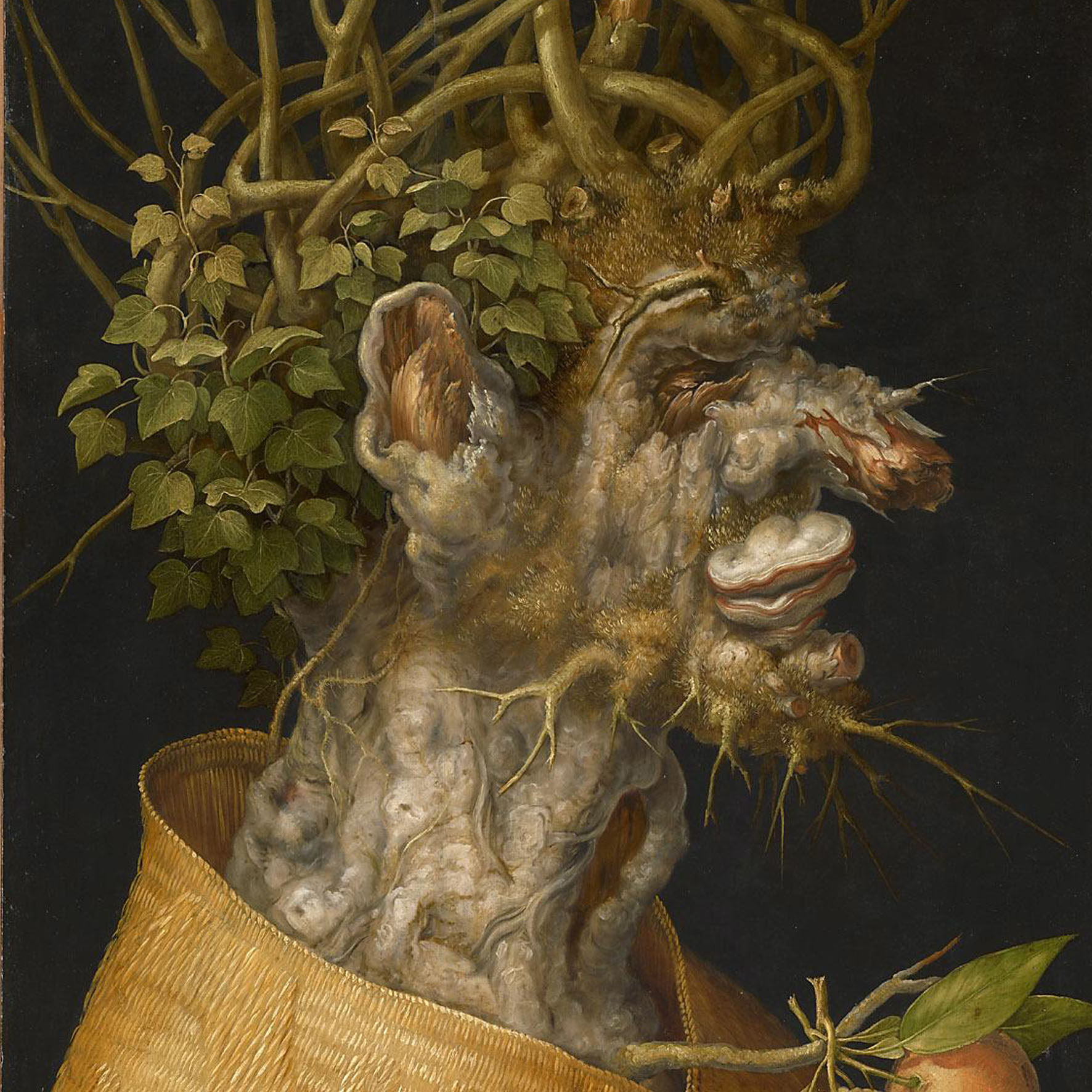 ARCIMBOLDO. NATURE INTO ART